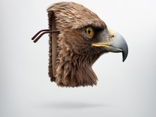 Sears Print Ad -  Eagle