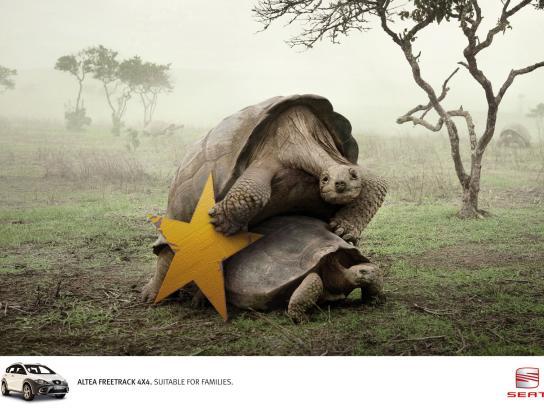 Seat Print Ad -  Tortoises