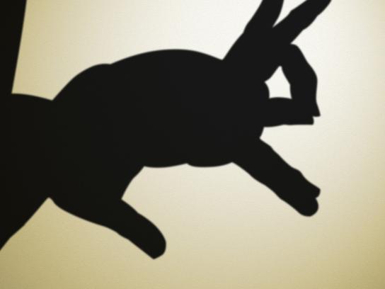 Sebamed Print Ad -  Rabbit
