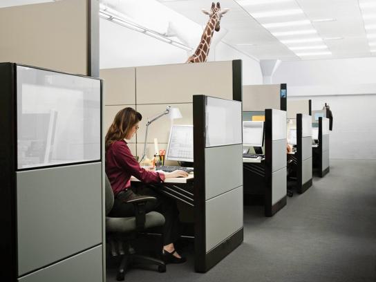 San Francisco Zoo Print Ad -  Giraffe