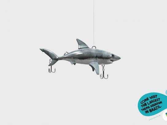 Prefeitura De Belo Horizonte Zoo Print Ad -  Shark