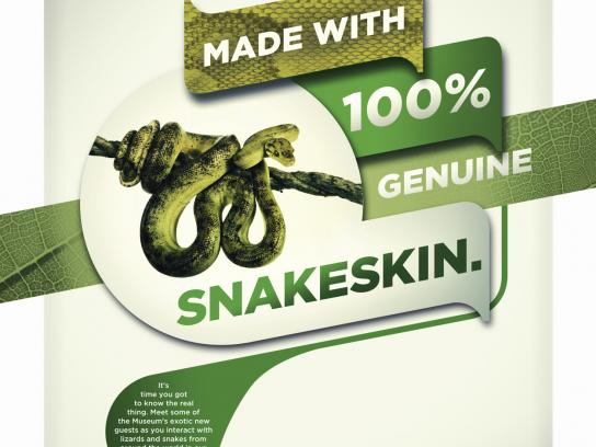 Denver Museum of Nature & Science Print Ad -  Snakeskin