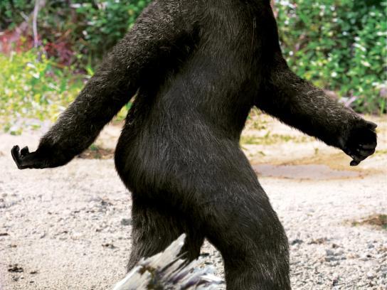 Sony Print Ad -  Bigfoot