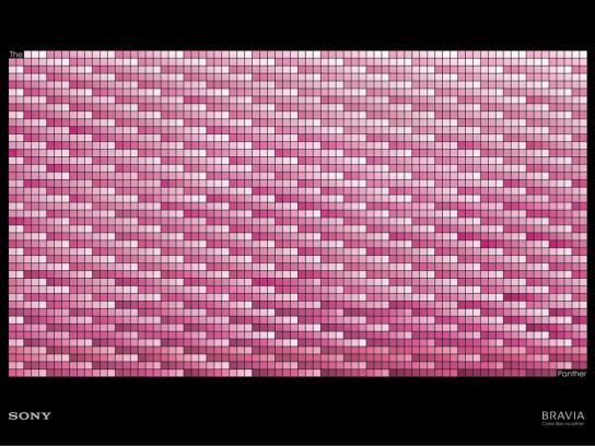 Sony Print Ad -  Pink