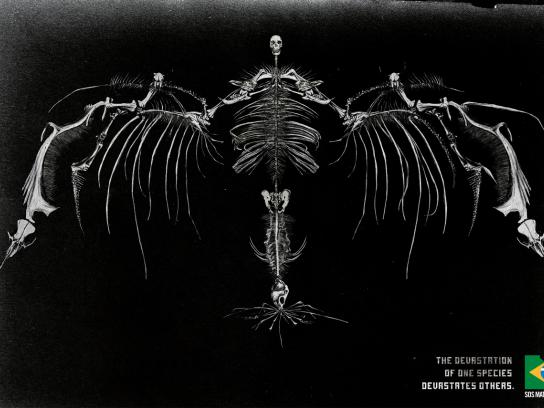 SOS Mata Atlântica Print Ad -  Skeleton, 3
