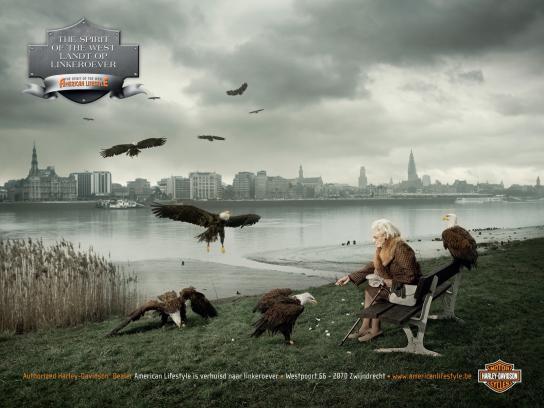 Harley-Davidson Print Ad -  Eagles