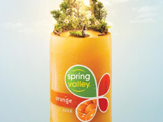 Spring Valley Print Ad -  Orange