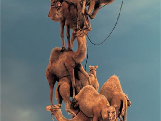 Nokia Print Ad -  Stack up camel