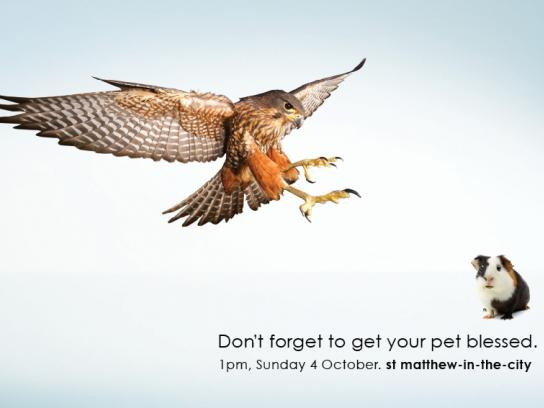 St Matthew-in-the-City Print Ad -  Pet