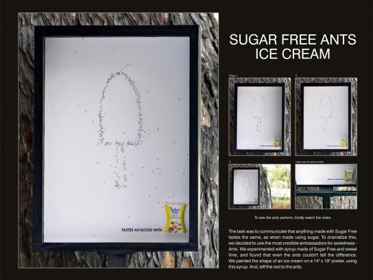 Ants, Ice-cream