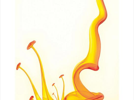 Taj Tea Trail Print Ad -  Metamorphosis