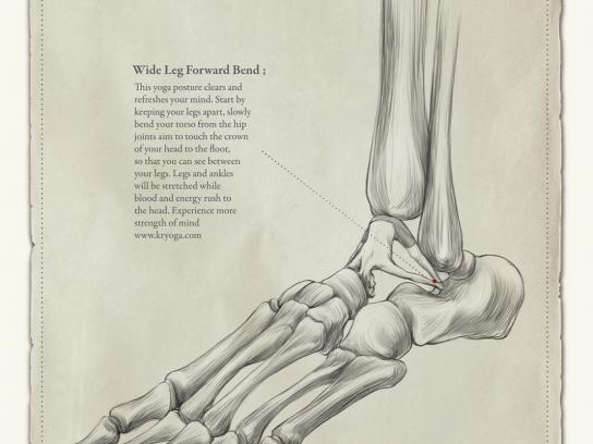 Kryoga Print Ad -  Talus