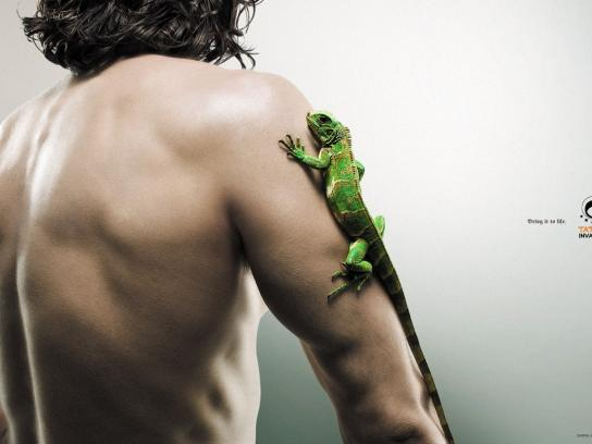 Tattoo Invaders Print Ad -  Lizard