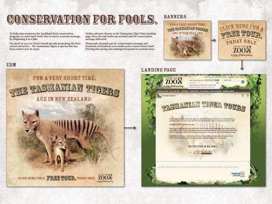 Auckland Zoo Digital Ad -  Tasmanian Tigers