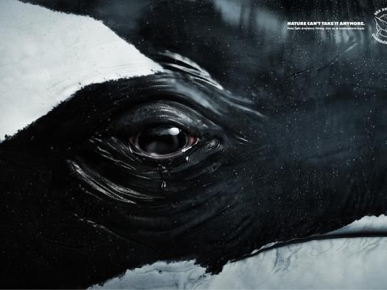 Sea Shepherd Print Ad -  Tears, Whale