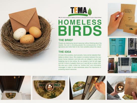 TEMA Direct Ad -  Homeless Birds
