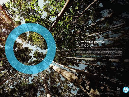 Tetra Pak Print Ad -  Forest Stewardship Council