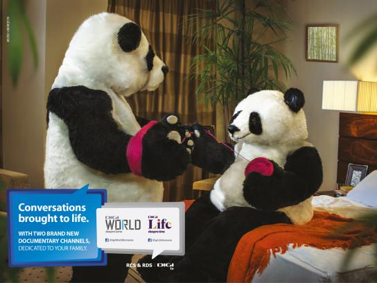 Digi TV Print Ad -  The Pandas