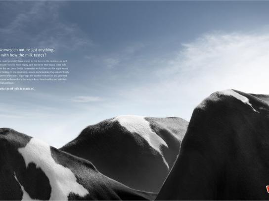 Tine Print Ad -  Mountains