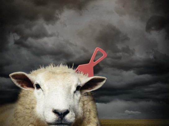 Toyota Print Ad -  Sheep
