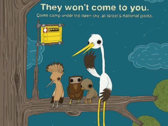 Israel National Parks Print Ad -  Tree