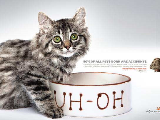 Best Friends Print Ad -  Uh-Oh