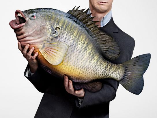 Upex Print Ad -  Fish, 3