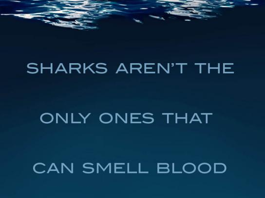 USA Water Polo Print Ad -  Sharks