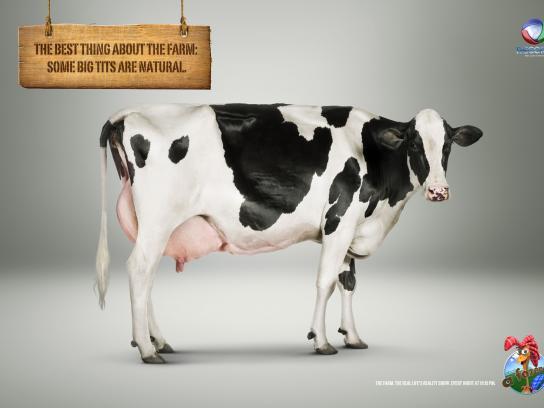 The Farm Print Ad -  Cow