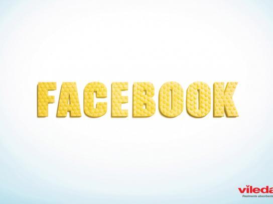 Vileda Print Ad -  Facebook