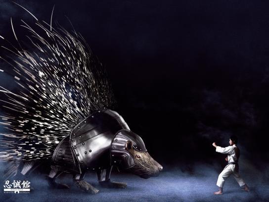 Ninseikan Print Ad -  vs Porcupine