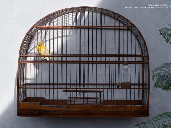 Volkswagen Print Ad -  Bird