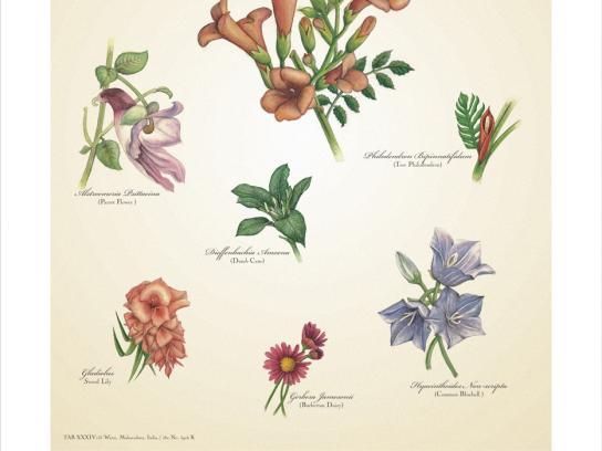 Warai Woods Print Ad -  Flowers
