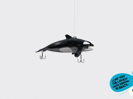 Prefeitura De Belo Horizonte Zoo Print Ad -  Whale