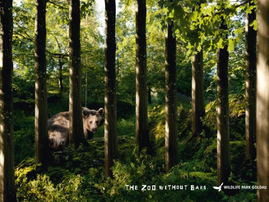 Landscape and Animal Park Goldau Print Ad -  Bear