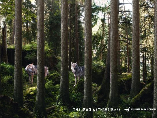 Landscape and Animal Park Goldau Print Ad -  Wolves
