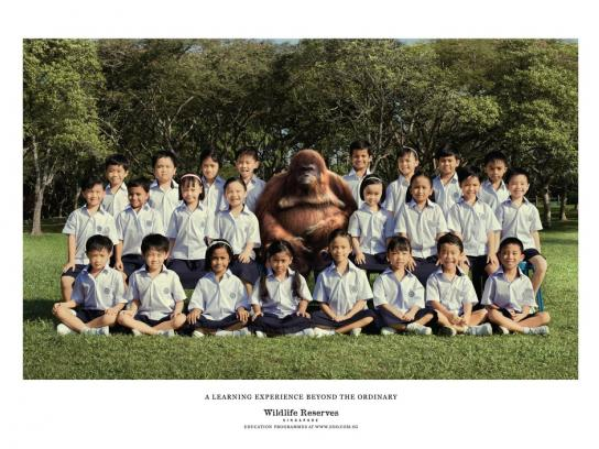 Wildlife Reserves Singapore Print Ad -  Teacher