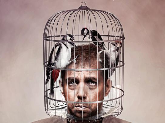 Ibuprom Print Ad -  Woodpeckers