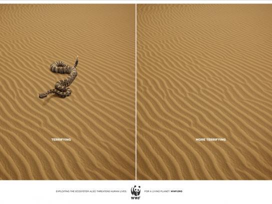 WWF Print Ad -  Snake
