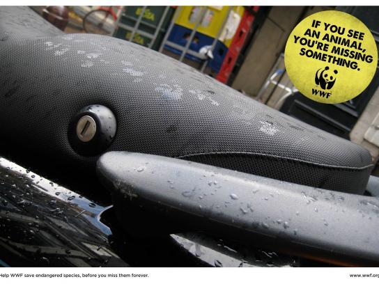 WWF Print Ad -  Dolphin