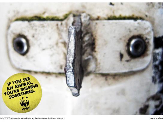 WWF Print Ad -  Owl