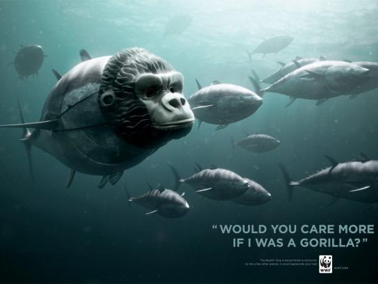 WWF Print Ad -  Gorilla