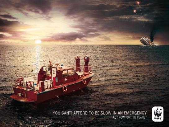 WWF Print Ad -  Boat