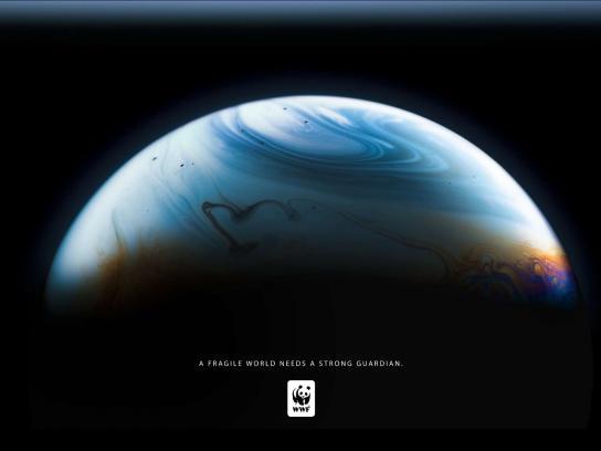 WWF Print Ad -  Bubble