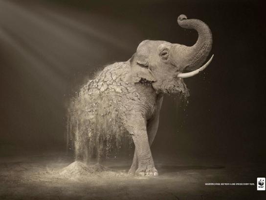 WWF Print Ad -  Elephant