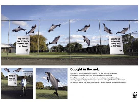 WWF Ambient Ad -  Stop