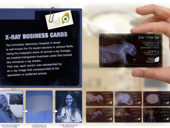 University Veterinary Hospital Direct Ad -  X-Ray Business Card