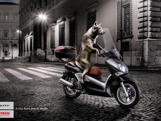 Yamaha Print Ad -  Wolf