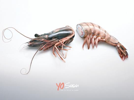 Yo Sushi Print Ad -  Prawn