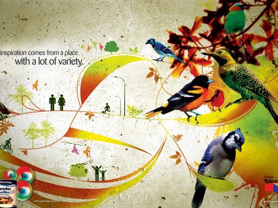 Ypiranga Print Ad -  Birds